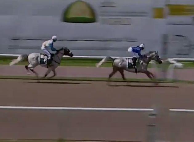 木之前葵さんが海外初騎乗初勝利の快挙!馬大好きな女の子が世界で羽ばたく!
