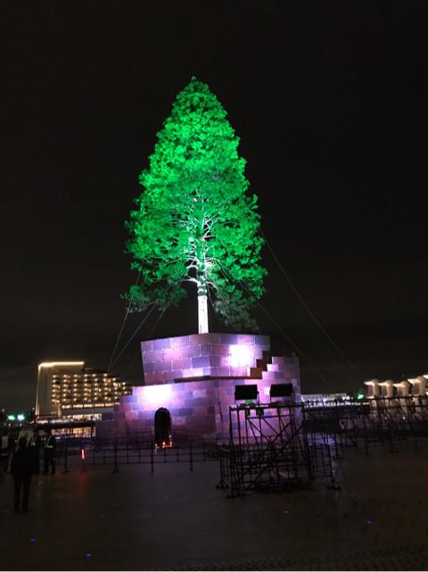 世界一のクリスマスツリー神戸の期間や時間とアクセス!早く見に行こう!!