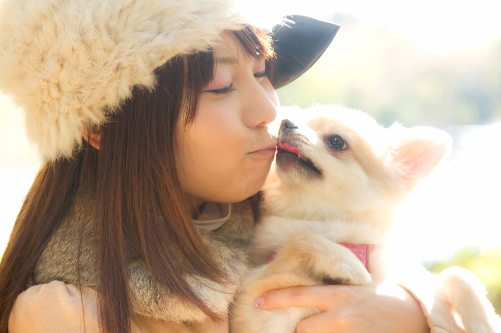 宮崎市、犬のしつけ教室一覧!しつけの悩み解決